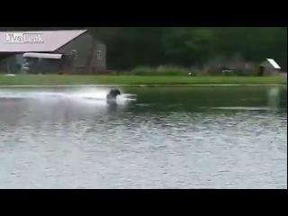 Машинка на радиоуправлении пересекает озеро по воде